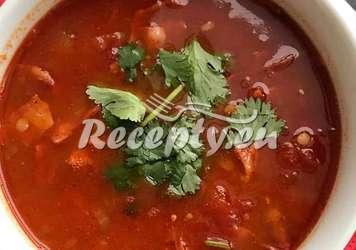 Čočková polévka s rajčaty Luštěniny